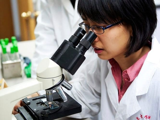 Accelerating drug discovery and development in China