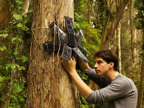 Rainforest Connection: Transforming old smartphones into deforestation detection devices