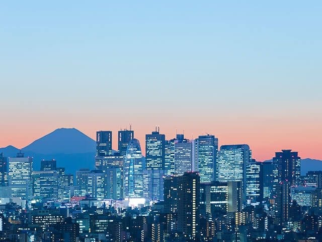 Make connections with the Japanese market through NTT DATA's global business challenge